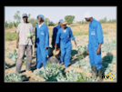 ./agriguide/gallery/E-TIC/Senegal/_thb_2-026.jpg